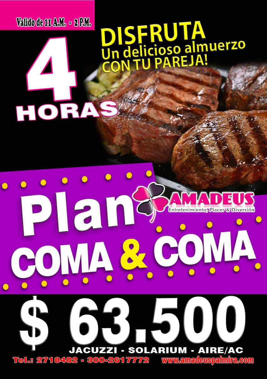 Promociones en Apartahotel Amadeus Palmira